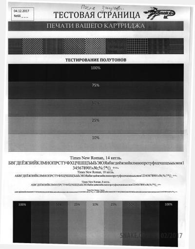 Тестовая страница после заправки